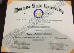 What if You Could Montana State University fake diploma Today?