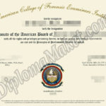 Your Key To Success: ACFEI fake certificate